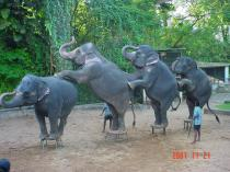 Elephant_dance_at_galleryfull
