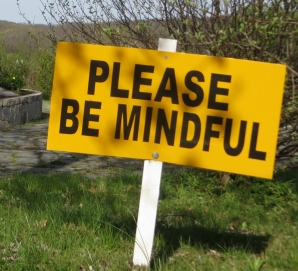 maba_pleasebemindful_sign